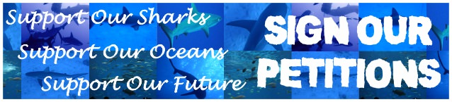 Shark conservation petitions