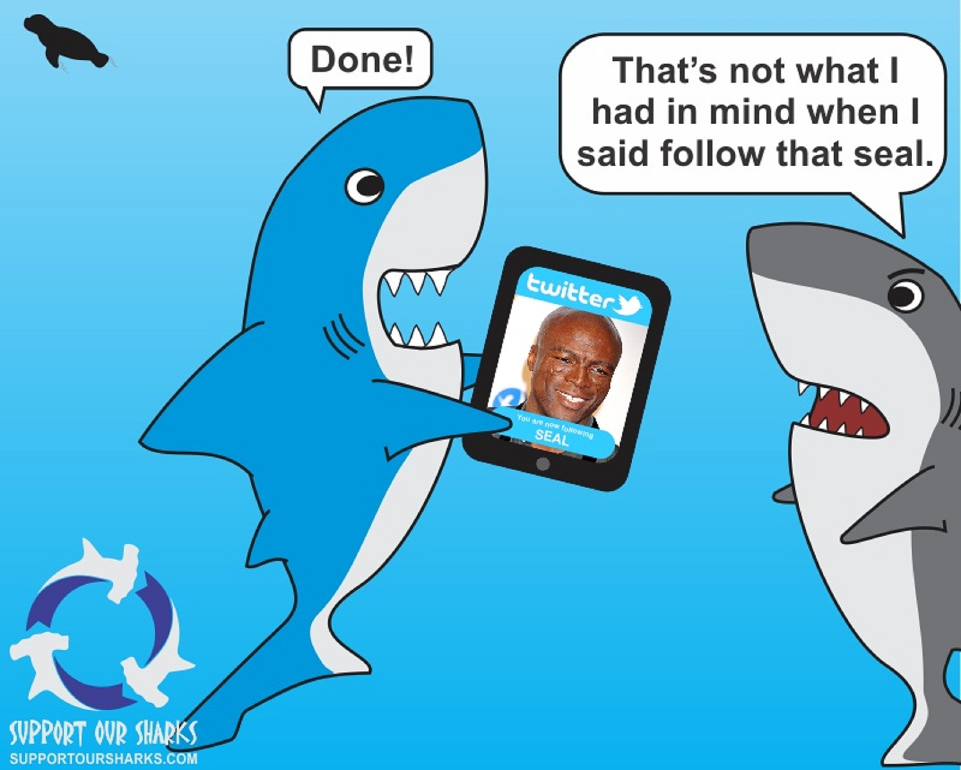 Follow That Seal Shark cartoons by Support Our Sharks